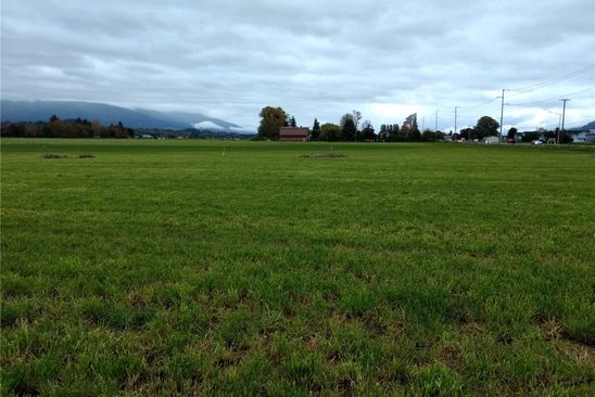null bed null bath Vacant Land at 0 District Line Rd Burlington, WA, 98233 is for sale at 125k - google static map