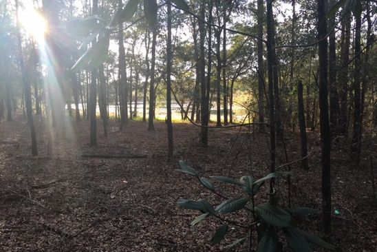 null bed null bath Vacant Land at 0 Tram Ct Tallahassee, FL, 32311 is for sale at 60k - google static map
