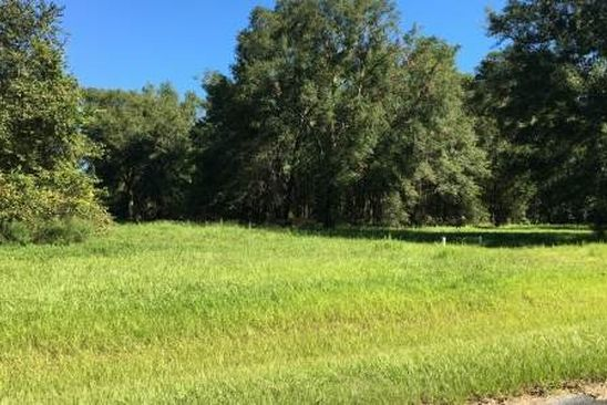 null bed null bath Vacant Land at NW Holly Park Cir Mayo, FL, 32066 is for sale at 38k - google static map