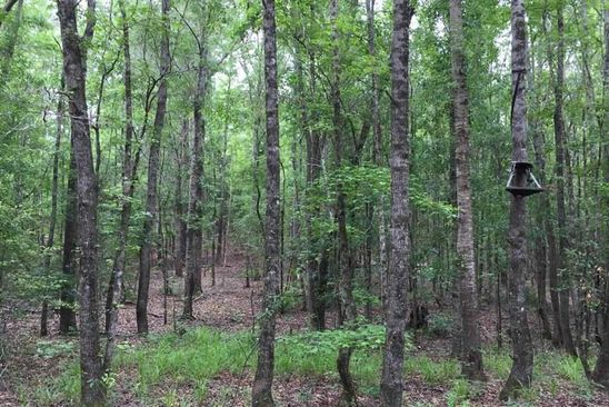 null bed null bath Vacant Land at 0 Buck Creek Rd Dry Branch, GA, 31020 is for sale at 50k - google static map