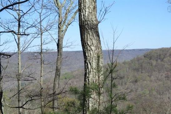 null bed null bath Vacant Land at 48 Mountain Laurel Trl McMinnville, TN, 37110 is for sale at 107k - google static map