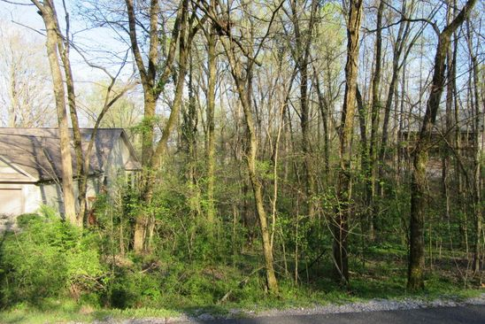 null bed null bath Vacant Land at 316 Dudala Way Loudon, TN, 37774 is for sale at 5k - google static map