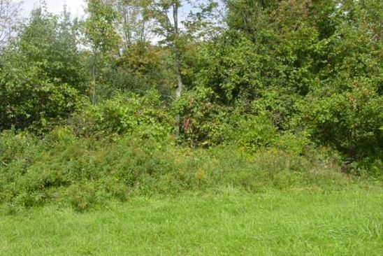 0 bed null bath Vacant Land at 610 County Route 360 Rensselaerville, NY, 12147 is for sale at 150k - google static map