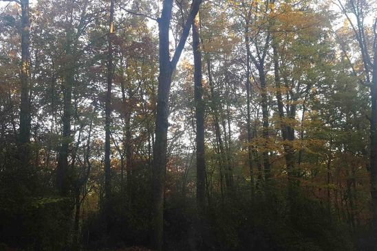 null bed null bath Vacant Land at 0 Golden Ln Clarkesville, GA, 30523 is for sale at 15k - google static map