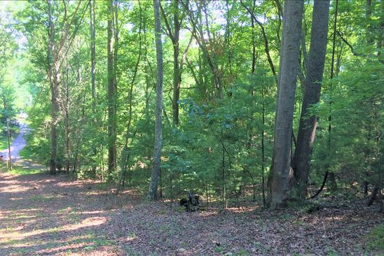 null bed null bath Vacant Land at  McDaniel Dr Blairsville, GA, 30512 is for sale at 8k - google static map