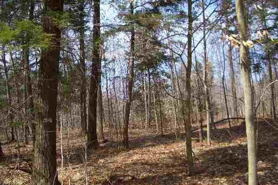 null bed null bath Vacant Land at 10 Rocky Ridge Rd West Charlton, NY, 12010 is for sale at 45k - google static map