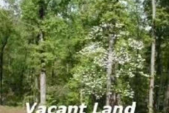 null bed null bath Vacant Land at  Tract 5 Linda Mountain View, AR, 72560 is for sale at 99k - google static map