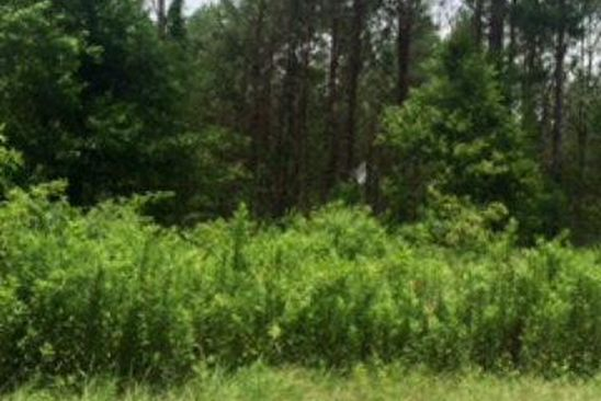 null bed null bath Vacant Land at 0 Riels Rd Seminary, MS, 39437 is for sale at 120k - google static map