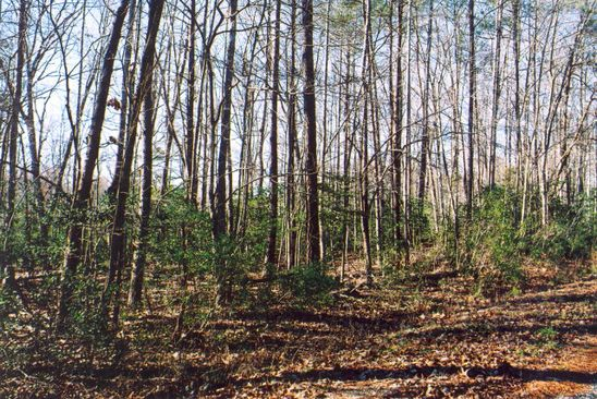 null bed null bath Vacant Land at 0 Wicomico Dr Burgess, VA, 22432 is for sale at 90k - google static map
