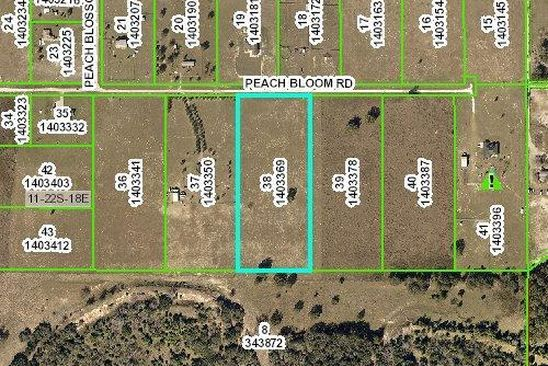 null bed null bath Vacant Land at 0 Peach Bloom Rd Brooksville, FL, 34613 is for sale at 126k - google static map