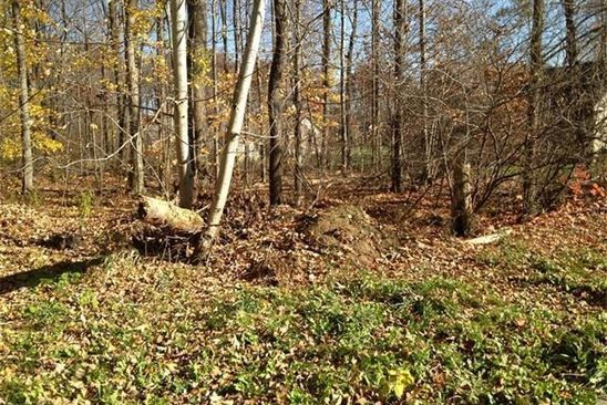 null bed null bath Vacant Land at 34 Brookview Dr Cortland, OH, 44410 is for sale at 33k - google static map