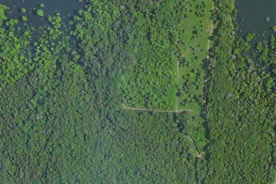 null bed null bath Vacant Land at  Flower Ln Clinton, AR, 72543 is for sale at 6k - google static map