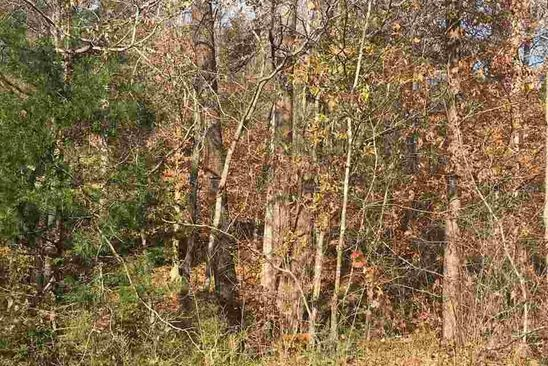 null bed null bath Vacant Land at 640 JEFFERSON DR PALMYRA, VA, 22963 is for sale at 20k - google static map