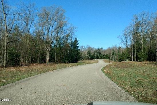 null bed null bath Vacant Land at  Heritage Dr Whitehall, MI, 49461 is for sale at 24k - google static map