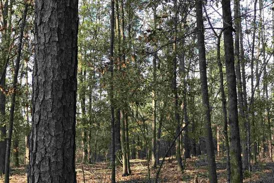 null bed null bath Vacant Land at 0 Fifth Rd Haddock, GA, 31033 is for sale at 19k - google static map