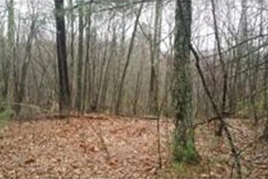 null bed null bath Vacant Land at L 20 Charty Hill Rd Hardwick, MA, 01037 is for sale at 25k - google static map