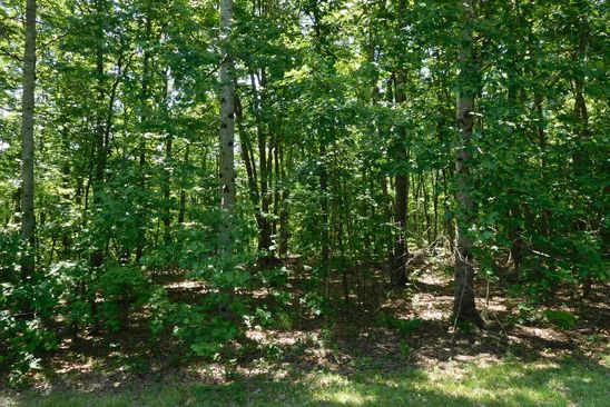 null bed null bath Vacant Land at  Laurel Way 6 Monterey, TN, 38574 is for sale at 23k - google static map