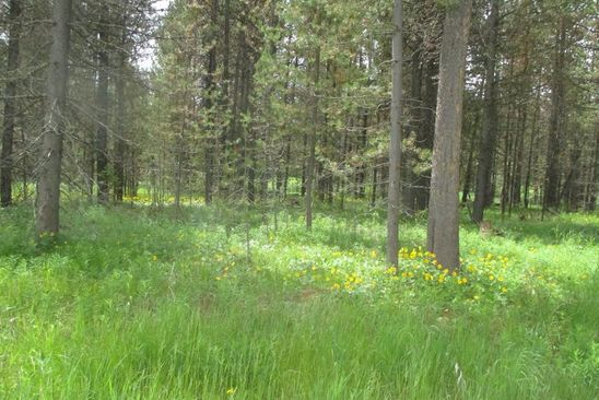 null bed null bath Vacant Land at 3501 Bull Moose Ln Island Park, ID, 83429 is for sale at 30k - google static map