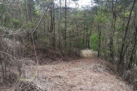 null bed null bath Vacant Land at 3B Center St Bryson City, NC, 28713 is for sale at 35k - google static map