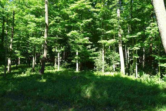 null bed null bath Vacant Land at  Bluff Dr Norway, MI, 49870 is for sale at 35k - google static map