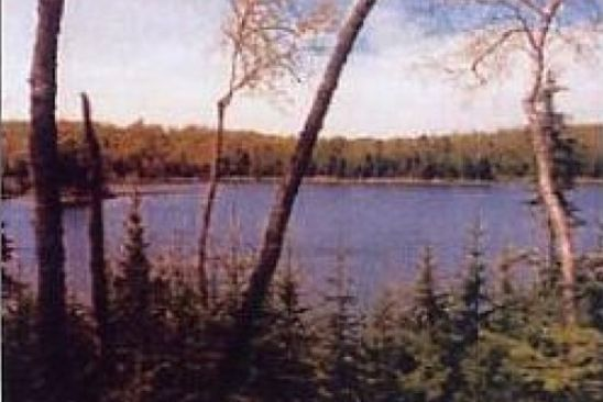 0 bed null bath Vacant Land at  Ottawa Ln Land O' Lakes, WI, 54540 is for sale at 69k - google static map