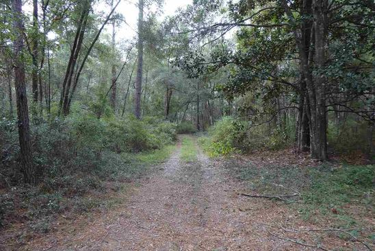 null bed null bath Vacant Land at  Tbd Rudd Rd Monticello, FL, 32344 is for sale at 17k - google static map
