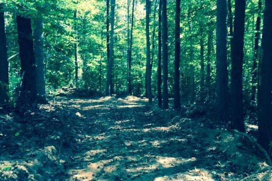 null bed null bath Vacant Land at 3 Ac. Scottsville Rd Schuyler, VA, 22969 is for sale at 40k - google static map